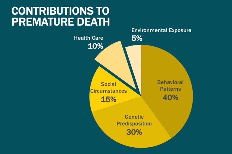 Contributions to Premature Death