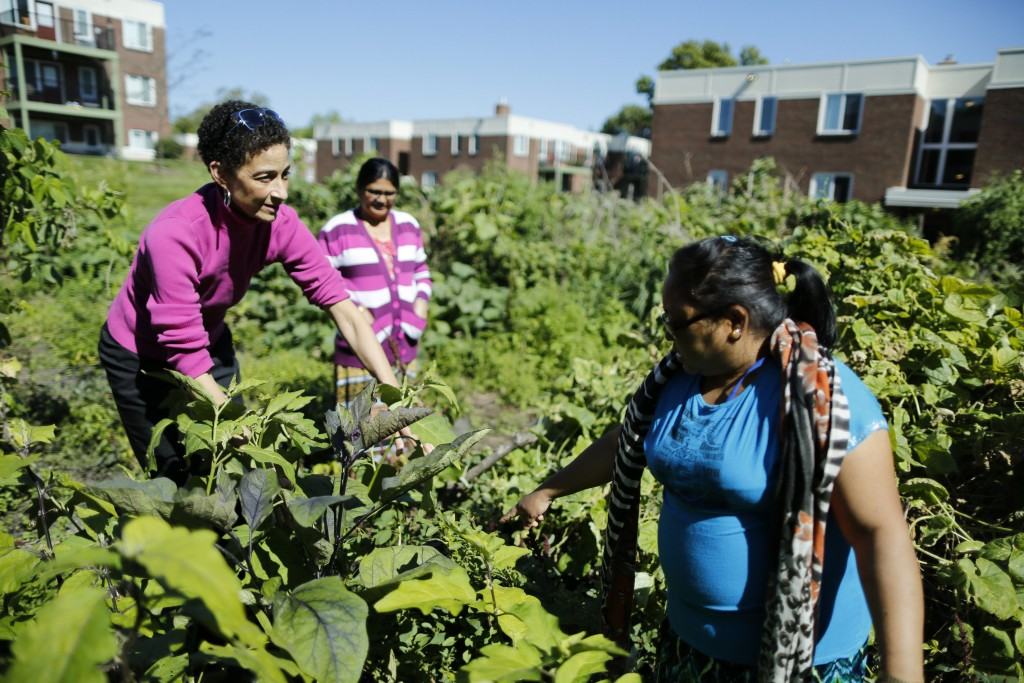 Residents and Community Health Advocate in Rolling Hills community garden.