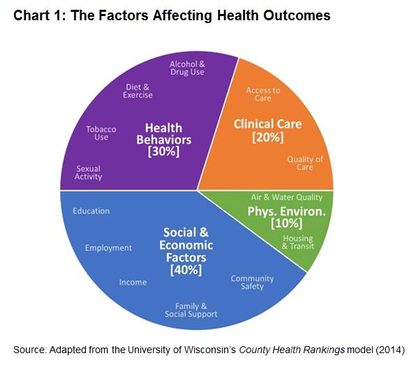 understanding health a determinants approach pdf